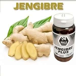 Jengibre Plus