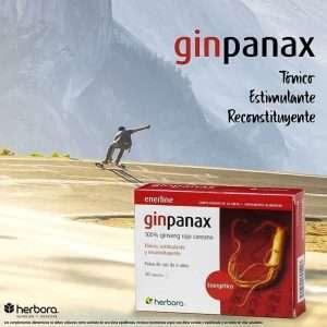 Ginpanax