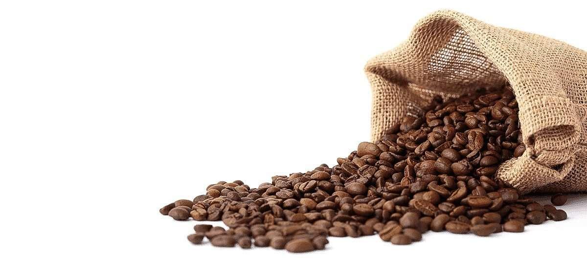 Café Biocop