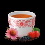 Defensas Naturales Yogi Tea 17 bolsitas