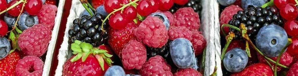 Bayas - los 10 mejores alimentos contra un sistema inmunológico débil